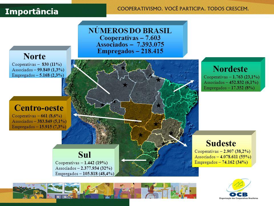 Norte Nordeste Centro-oeste Sudeste Sul Importância NÚMEROS DO BRASIL