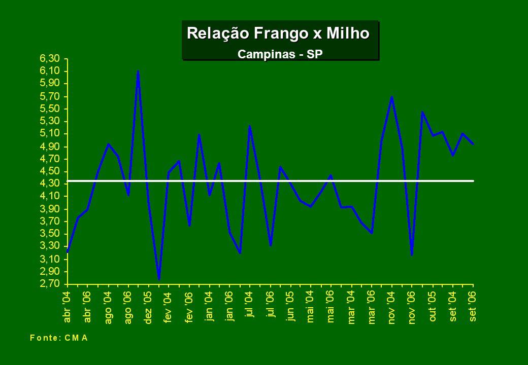 Relação Frango x Milho Campinas - SP