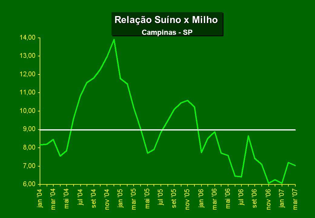 Relação Suíno x Milho Campinas - SP