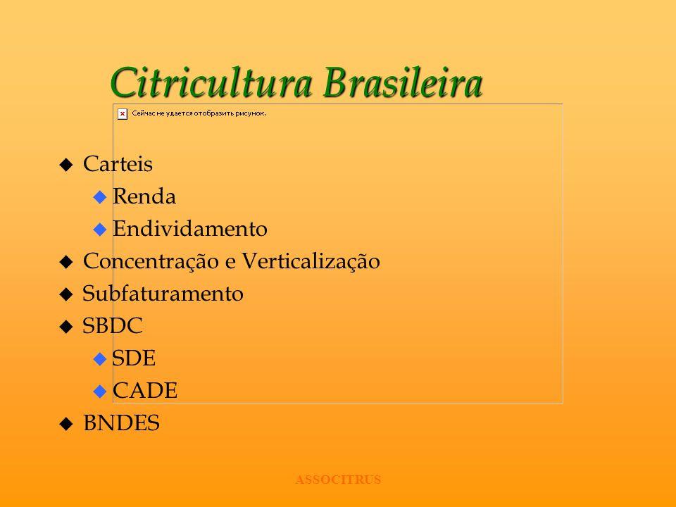 Citricultura Brasileira