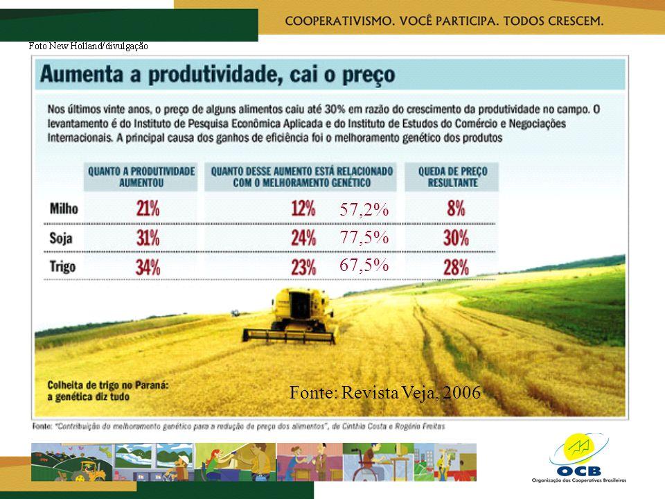 57,2% 77,5% 67,5% Fonte: Revista Veja, 2006