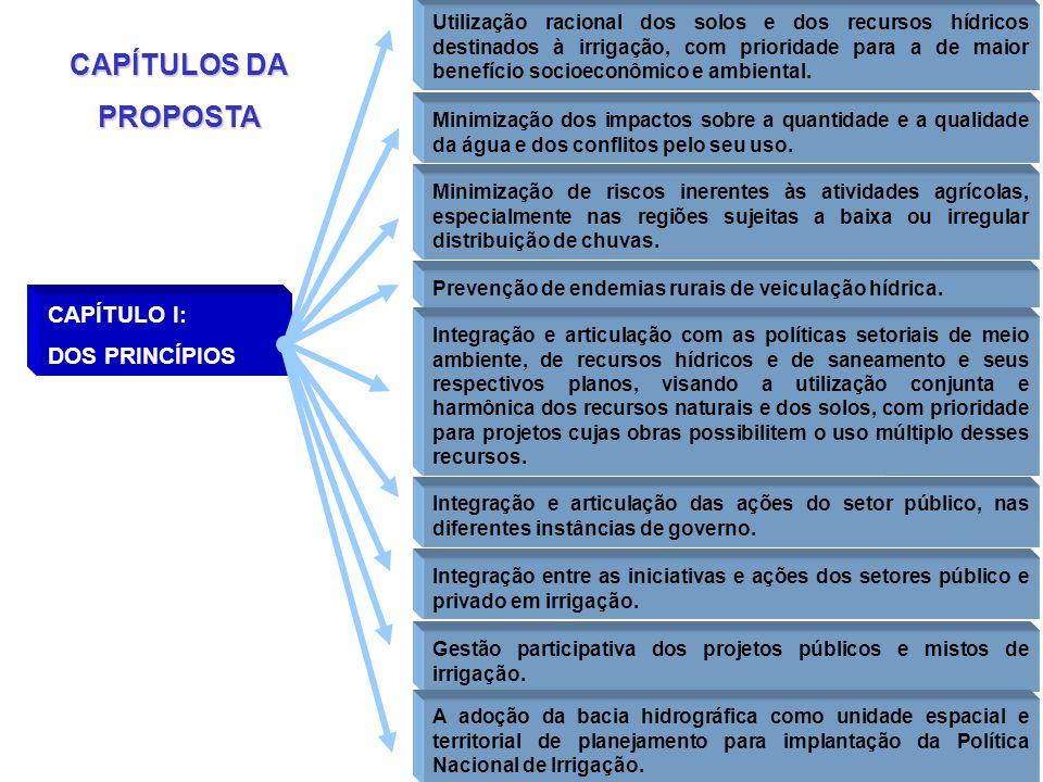 CAPÍTULOS DA PROPOSTA CAPÍTULO I: DOS PRINCÍPIOS