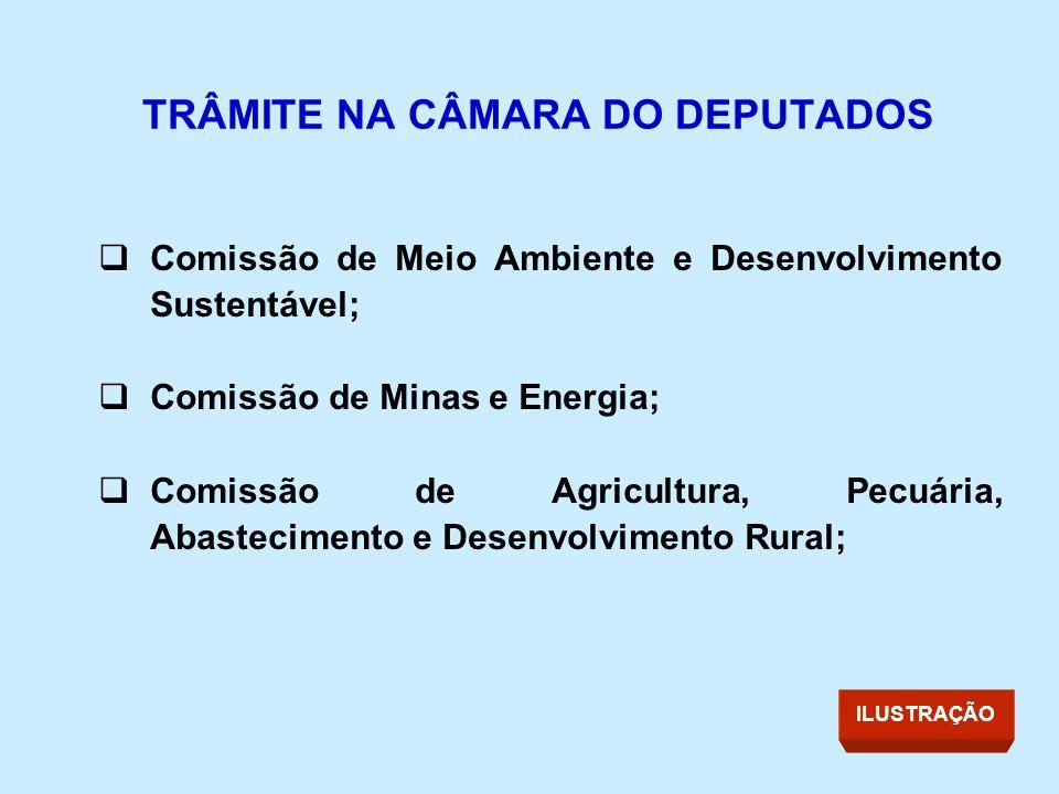 TRÂMITE NA CÂMARA DO DEPUTADOS