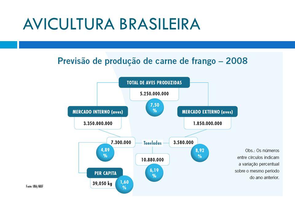 AVICULTURA BRASILEIRA