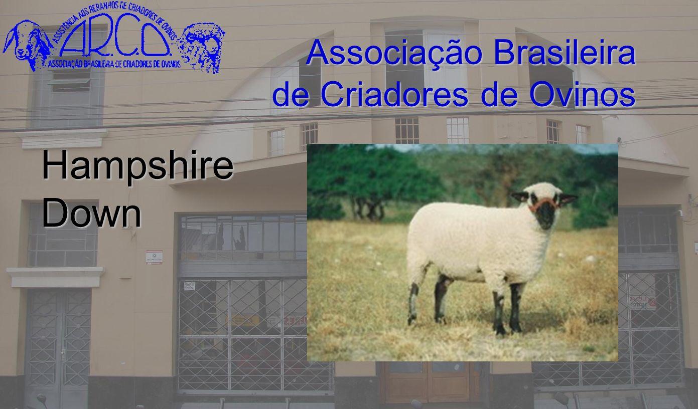 Associação Brasileira de Criadores de Ovinos