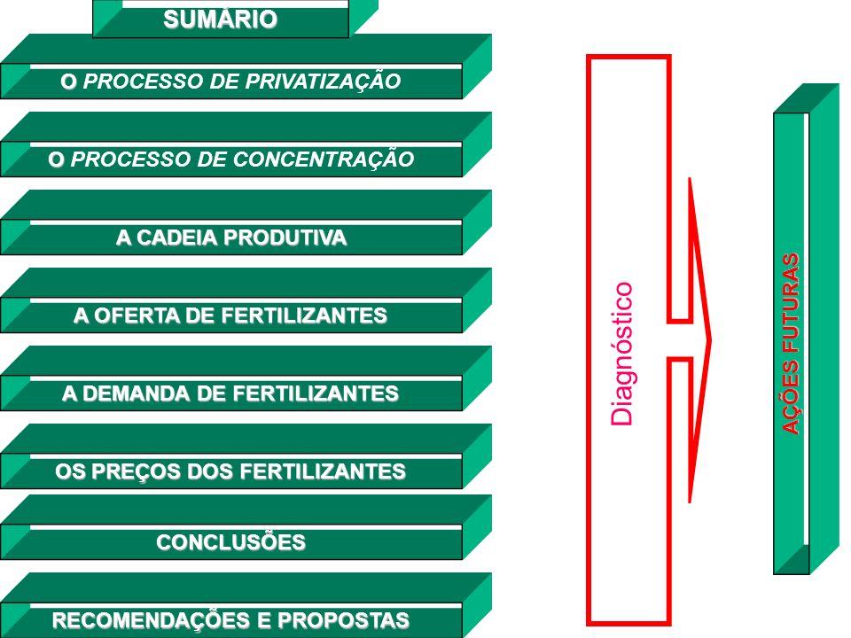 Diagnóstico SUMÁRIO O PROCESSO DE PRIVATIZAÇÃO