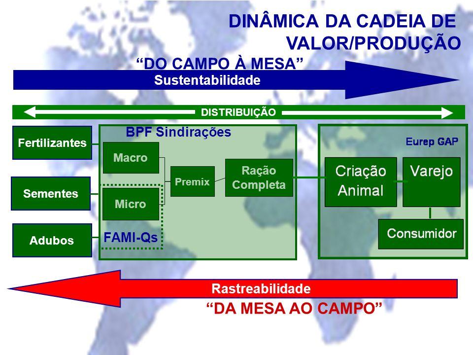 DINÂMICA DA CADEIA DE VALOR/PRODUÇÃO DO CAMPO À MESA