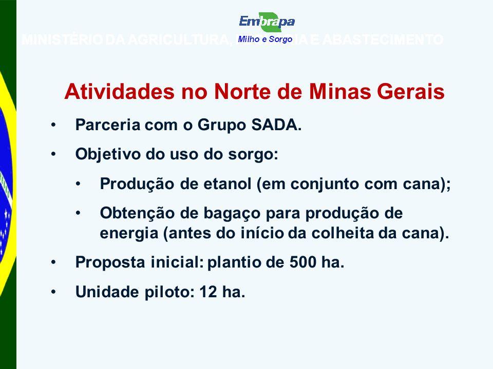 Atividades no Norte de Minas Gerais