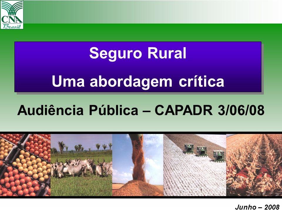 Audiência Pública – CAPADR 3/06/08