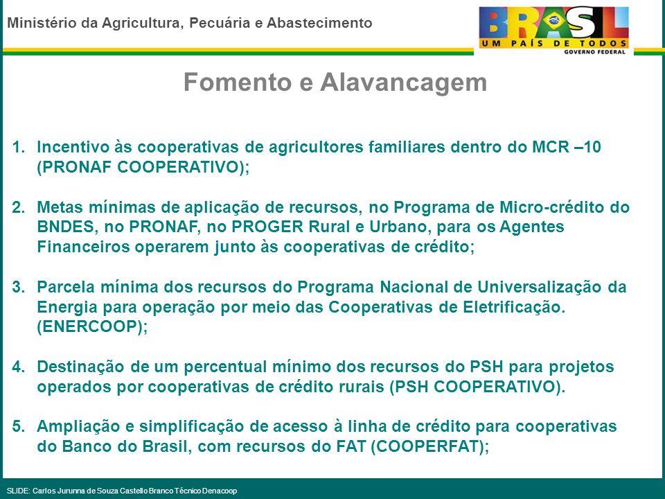Fomento e AlavancagemIncentivo às cooperativas de agricultores familiares dentro do MCR –10 (PRONAF COOPERATIVO);
