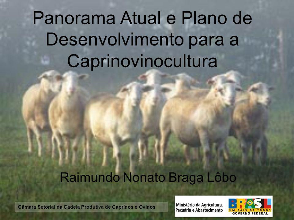 Panorama Atual e Plano de Desenvolvimento para a Caprinovinocultura