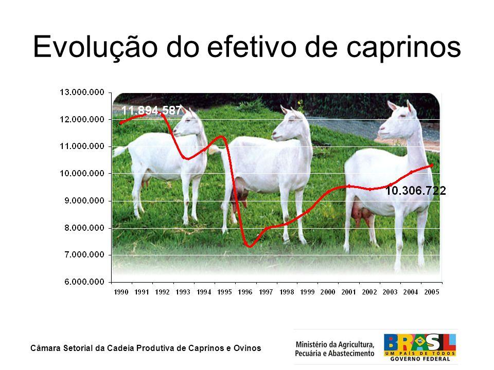 Evolução do efetivo de caprinos