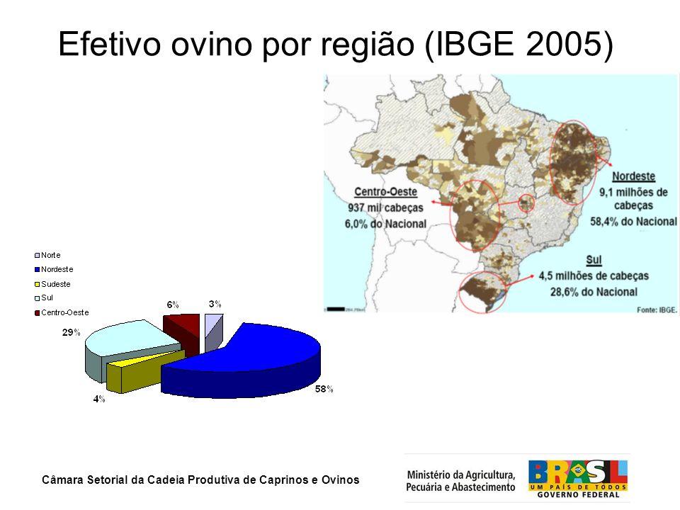 Efetivo ovino por região (IBGE 2005)