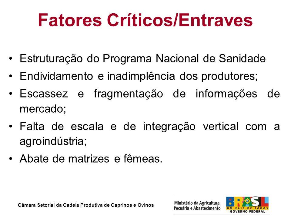 Fatores Críticos/Entraves