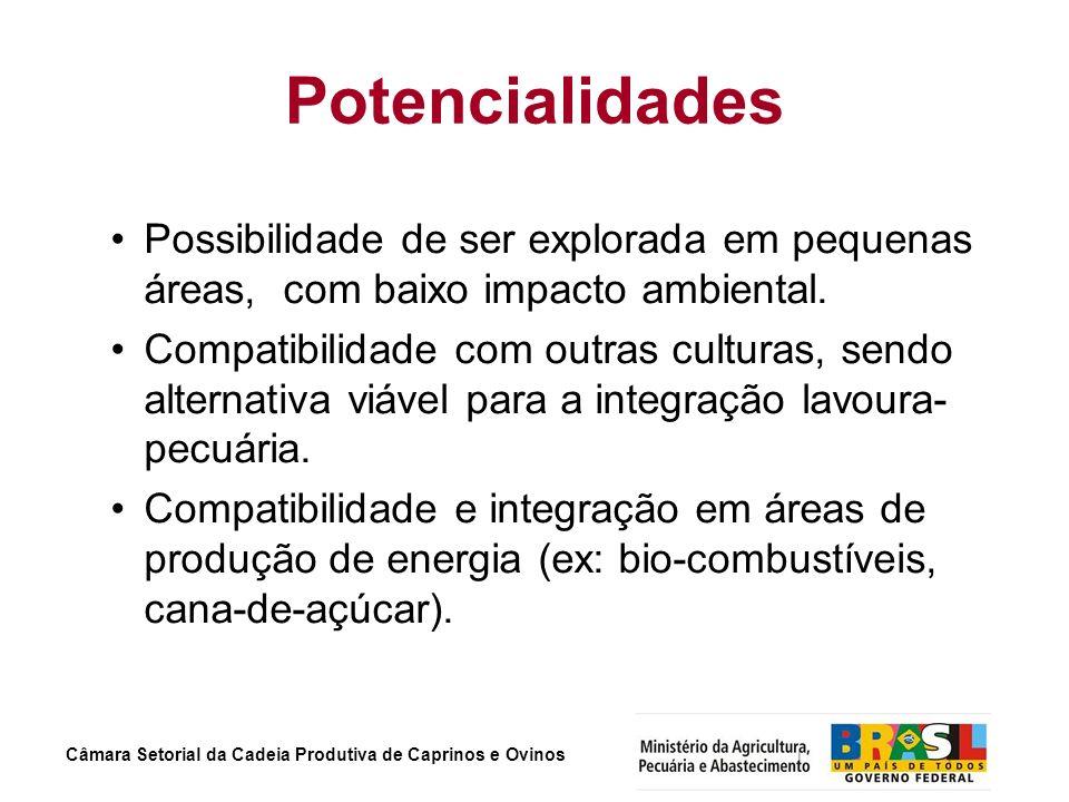 Potencialidades Possibilidade de ser explorada em pequenas áreas, com baixo impacto ambiental.