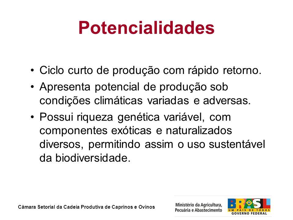 Potencialidades Ciclo curto de produção com rápido retorno.
