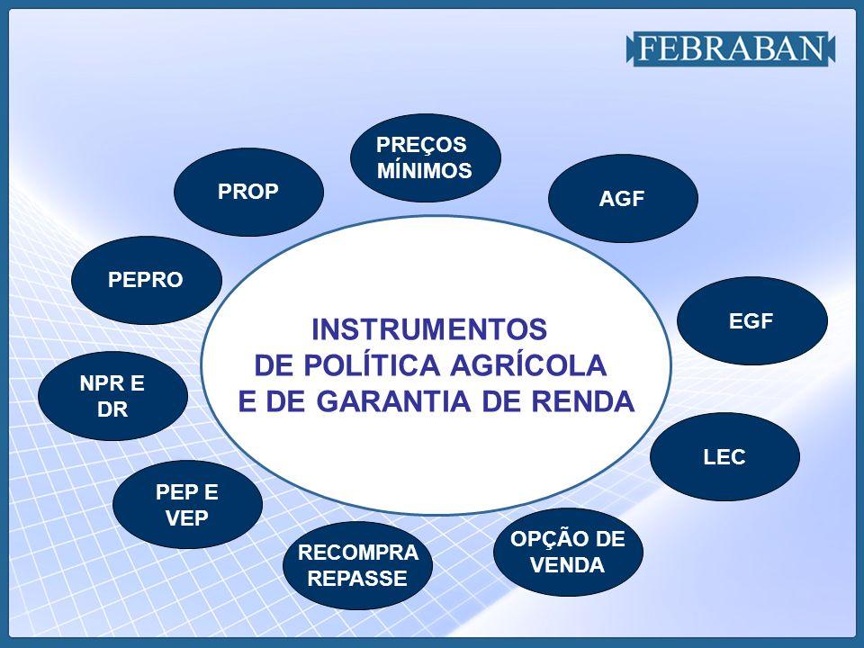 INSTRUMENTOS DE POLÍTICA AGRÍCOLA E DE GARANTIA DE RENDA
