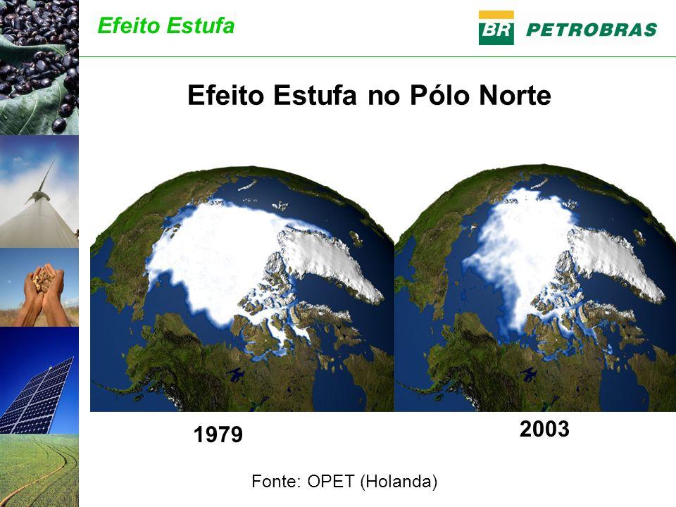 Efeito Estufa no Pólo Norte