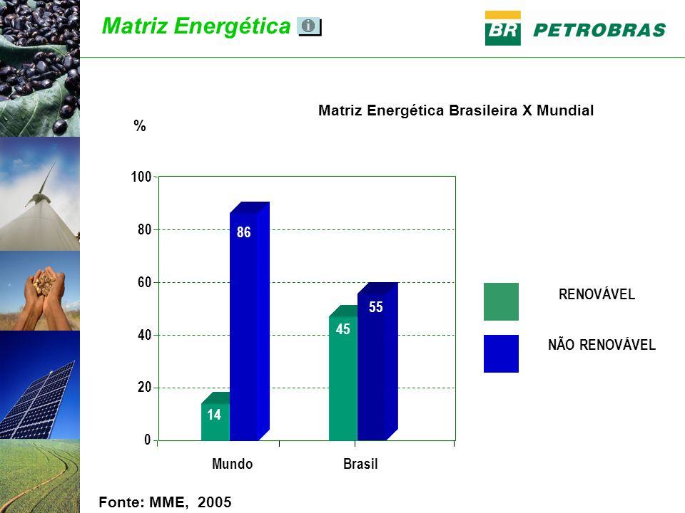 Matriz Energética Fonte: MME, 2005 RENOVÁVEL NÃO RENOVÁVEL Brasil 20