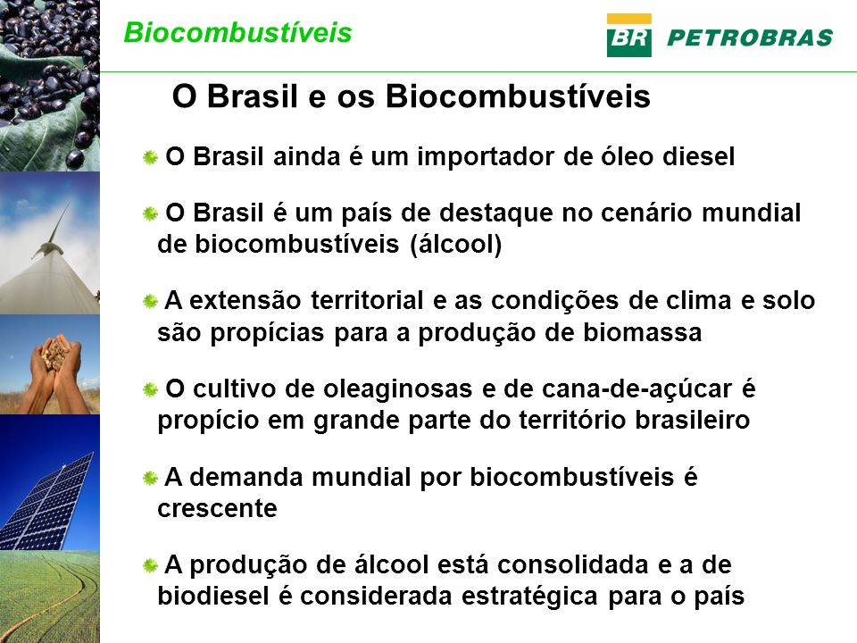 O Brasil e os Biocombustíveis
