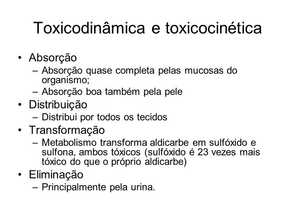 Toxicodinâmica e toxicocinética