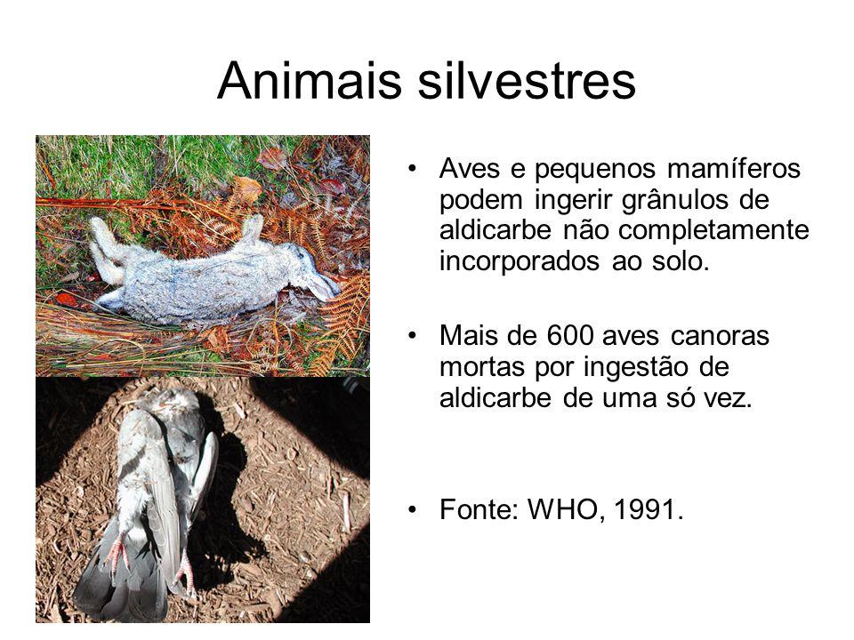 Animais silvestres Aves e pequenos mamíferos podem ingerir grânulos de aldicarbe não completamente incorporados ao solo.