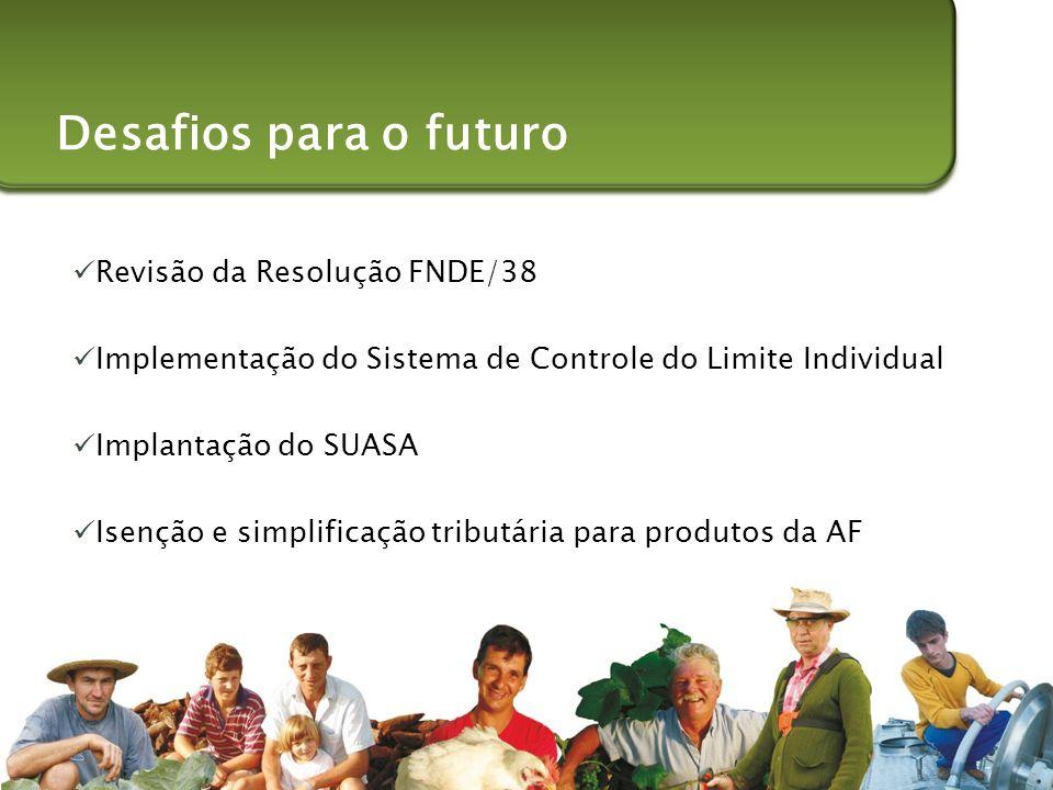Desafios para o futuro Revisão da Resolução FNDE/38