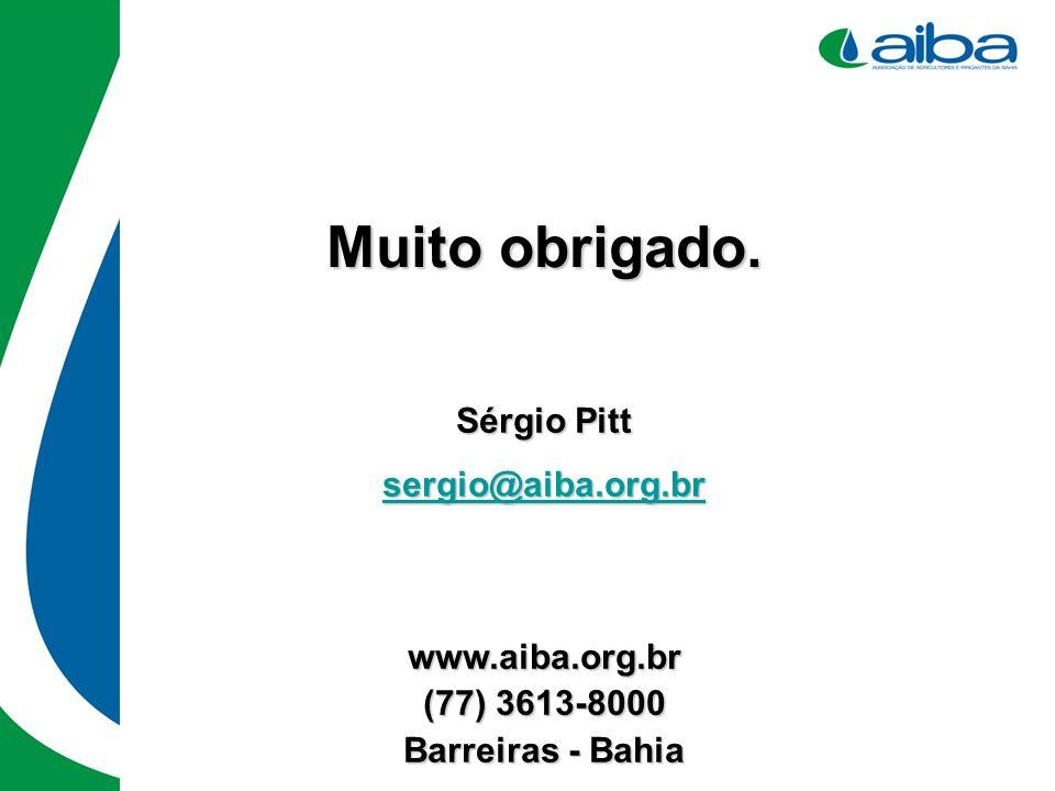 Muito obrigado. Sérgio Pitt sergio@aiba.org.br www.aiba.org.br