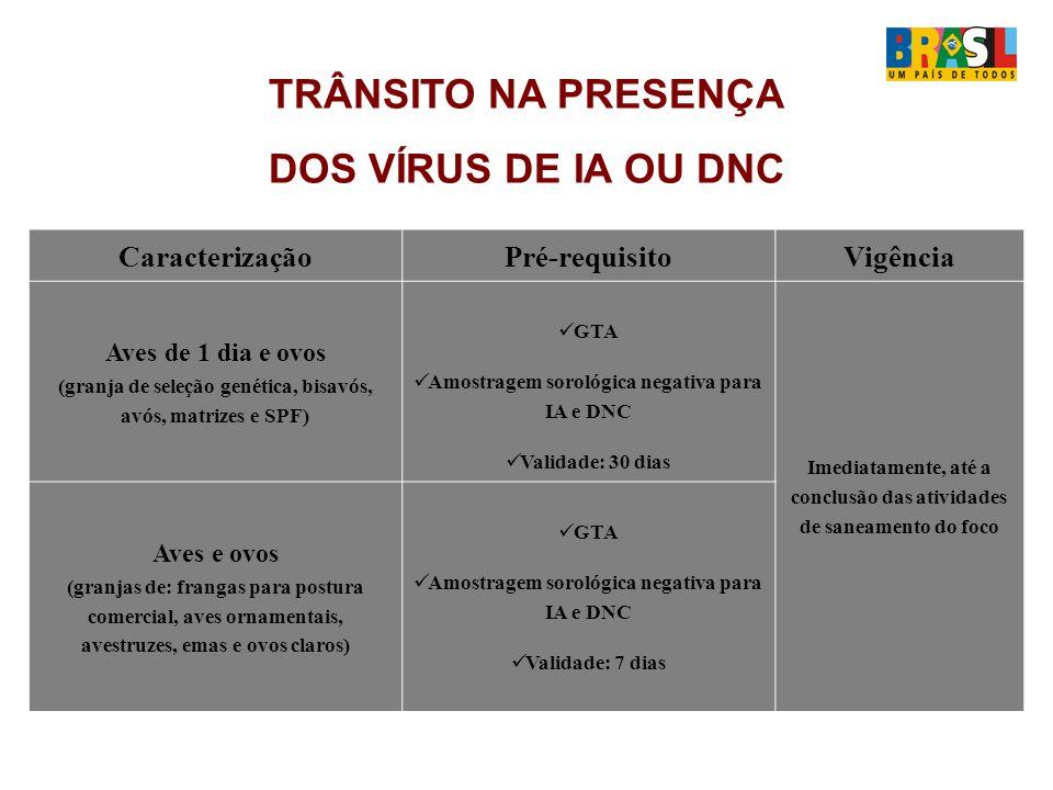 TRÂNSITO NA PRESENÇA DOS VÍRUS DE IA OU DNC