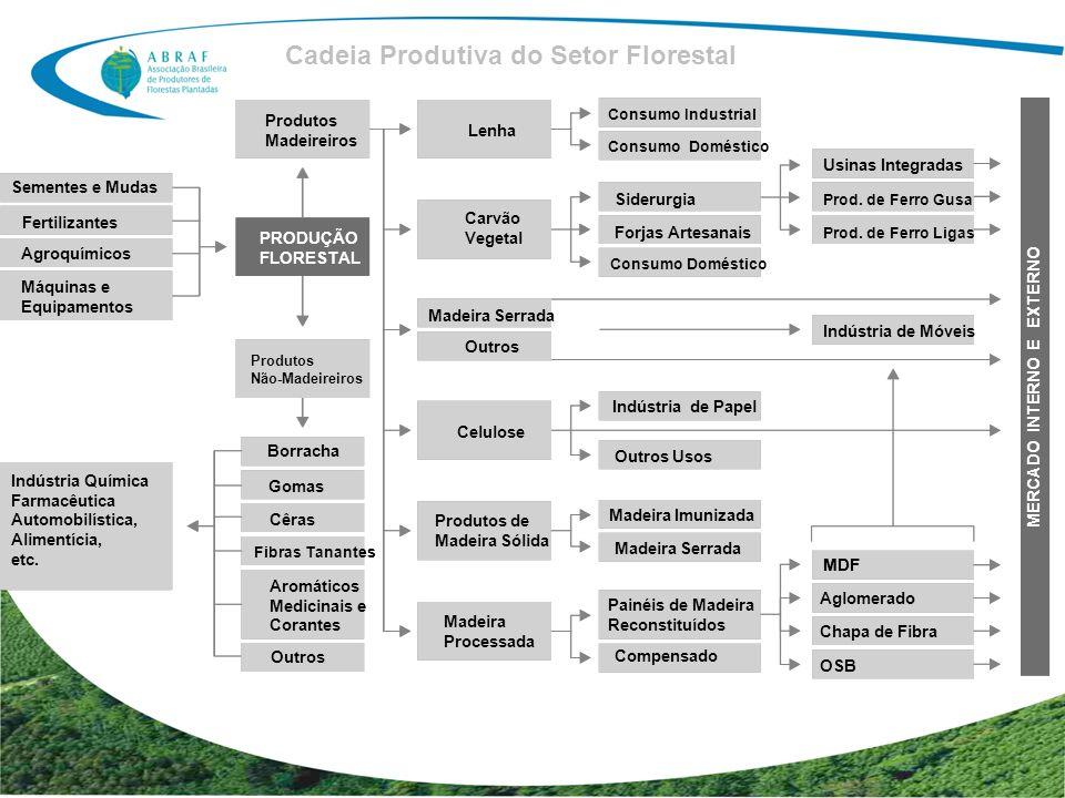 Cadeia Produtiva do Setor Florestal MERCADO INTERNO E EXTERNO