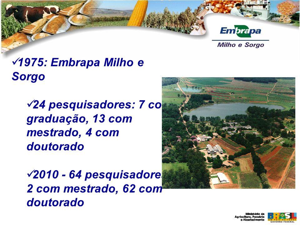 1975: Embrapa Milho e Sorgo 24 pesquisadores: 7 com graduação, 13 com mestrado, 4 com doutorado.