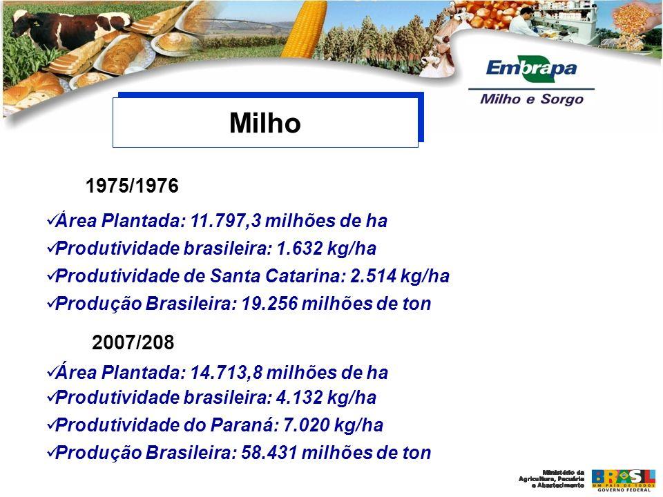 Milho 1975/1976 2007/208 Área Plantada: 11.797,3 milhões de ha
