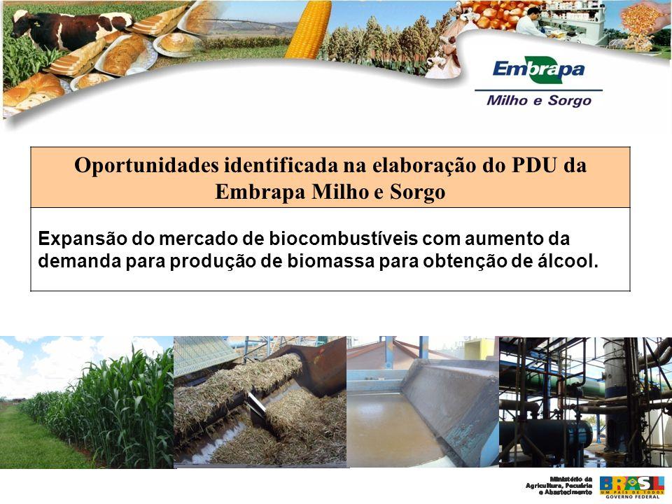 Oportunidades identificada na elaboração do PDU da Embrapa Milho e Sorgo