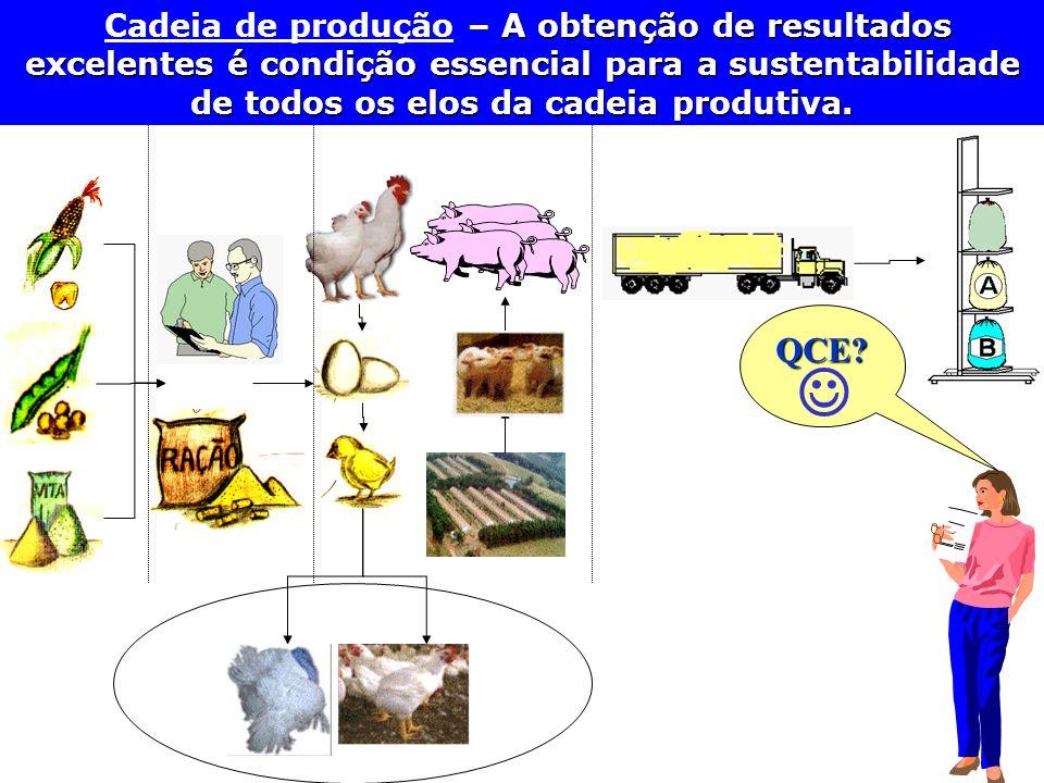 Cadeia de produção – A obtenção de resultados excelentes é condição essencial para a sustentabilidade de todos os elos da cadeia produtiva.
