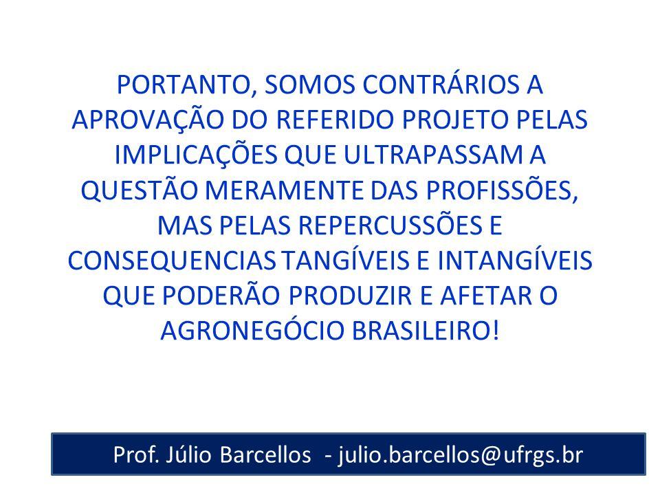 Prof. Júlio Barcellos - julio.barcellos@ufrgs.br