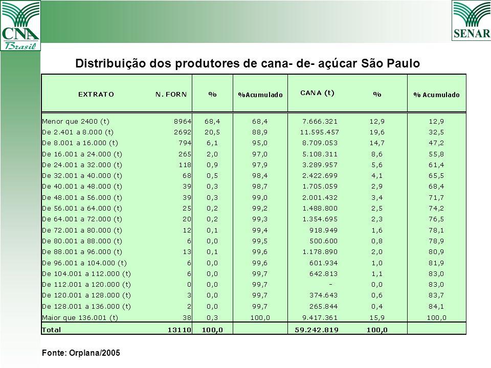 Distribuição dos produtores de cana- de- açúcar São Paulo