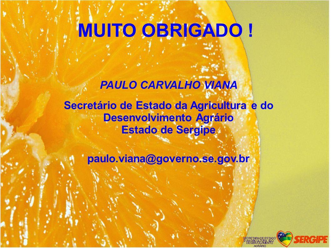 Secretário de Estado da Agricultura e do Desenvolvimento Agrário