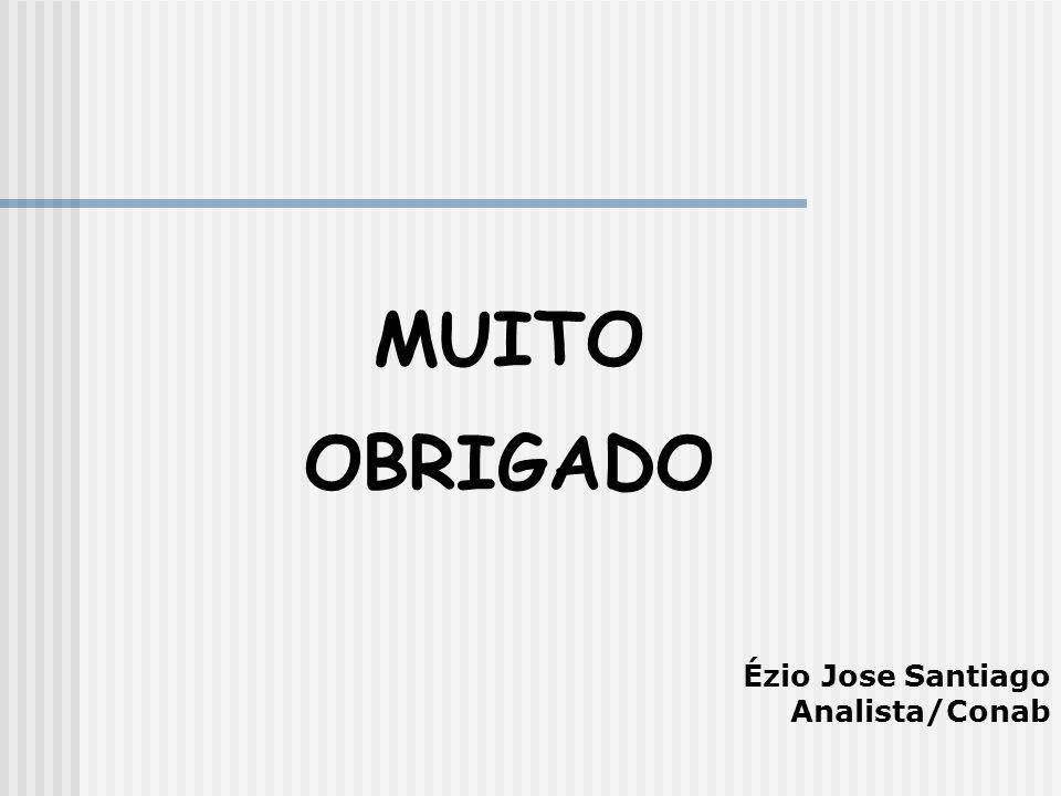 MUITO OBRIGADO Ézio Jose Santiago Analista/Conab