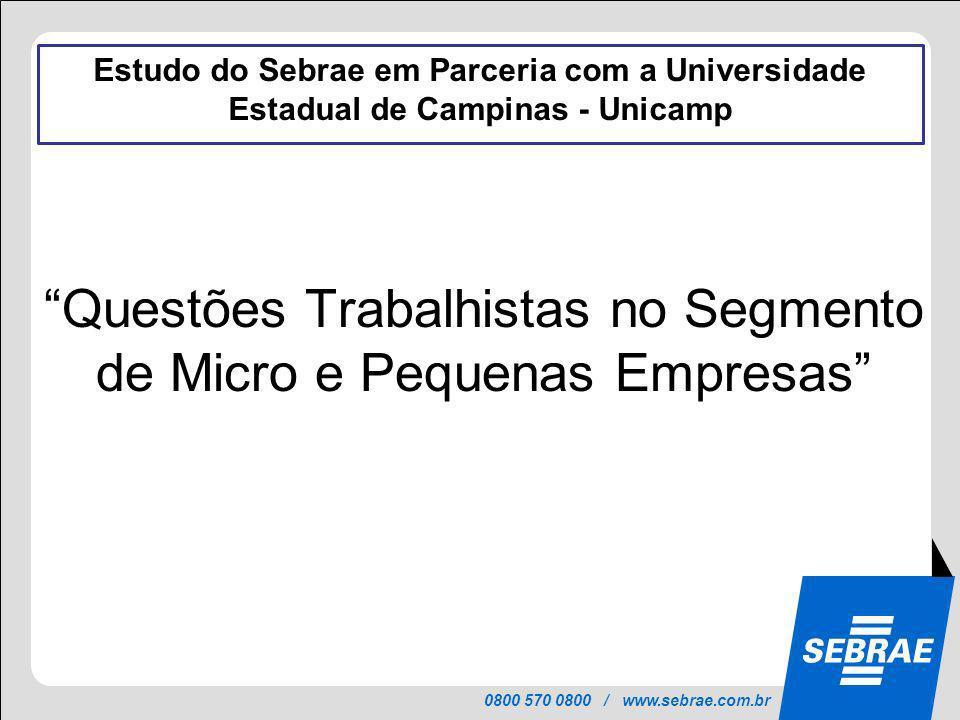 Questões Trabalhistas no Segmento de Micro e Pequenas Empresas