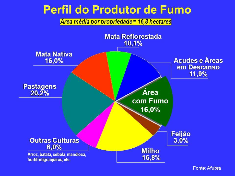 Perfil do Produtor de Fumo