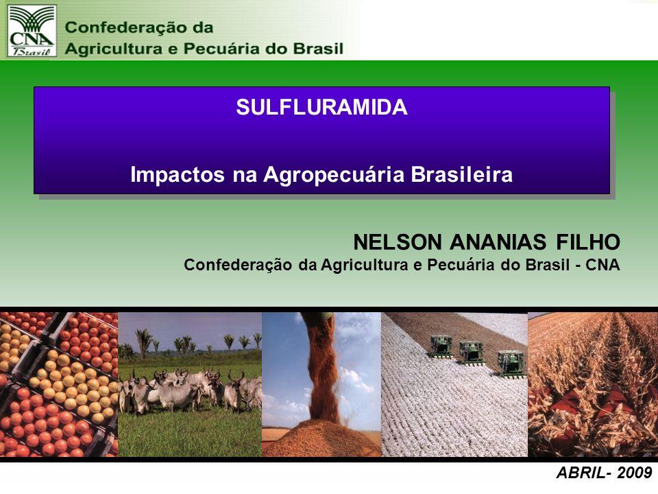 Impactos na Agropecuária Brasileira