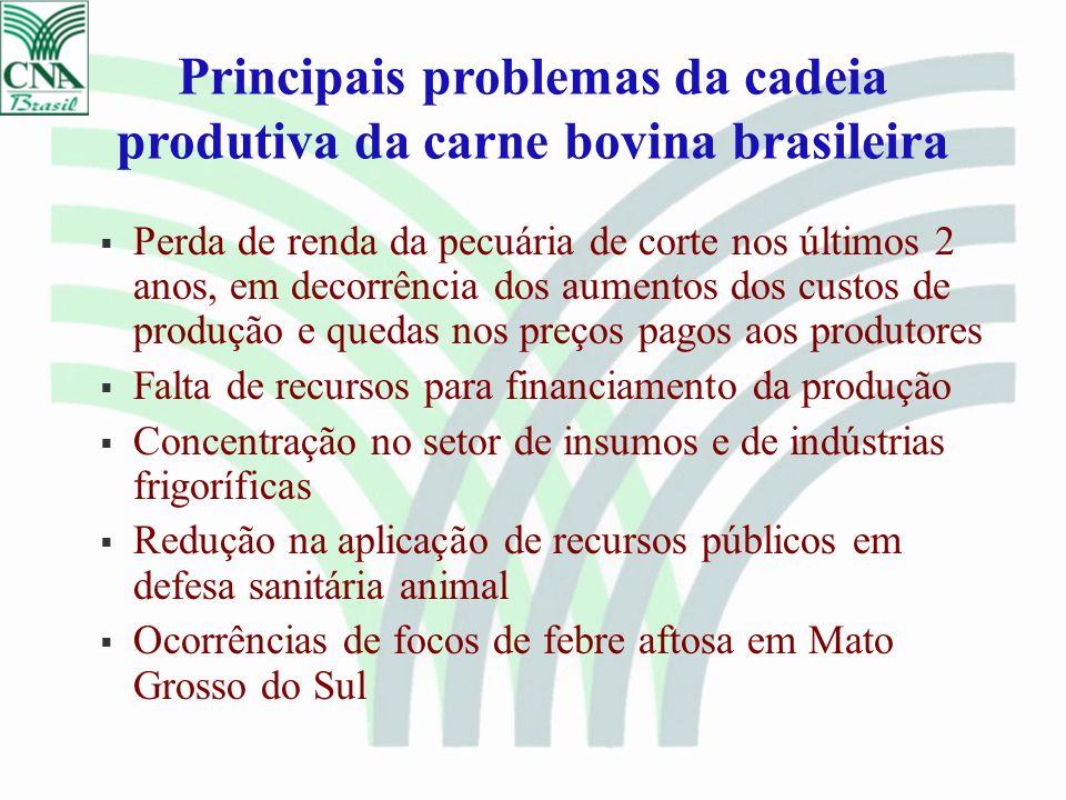 Principais problemas da cadeia produtiva da carne bovina brasileira