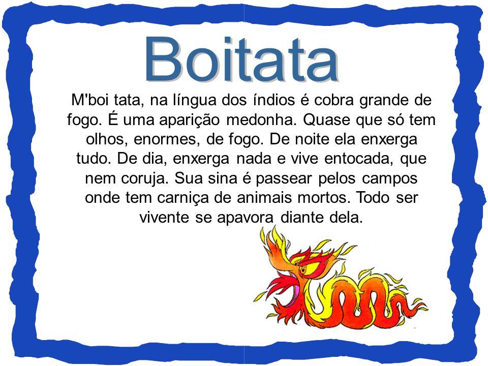Boitata