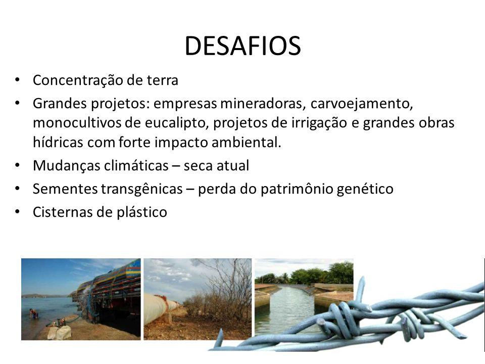 DESAFIOS Concentração de terra
