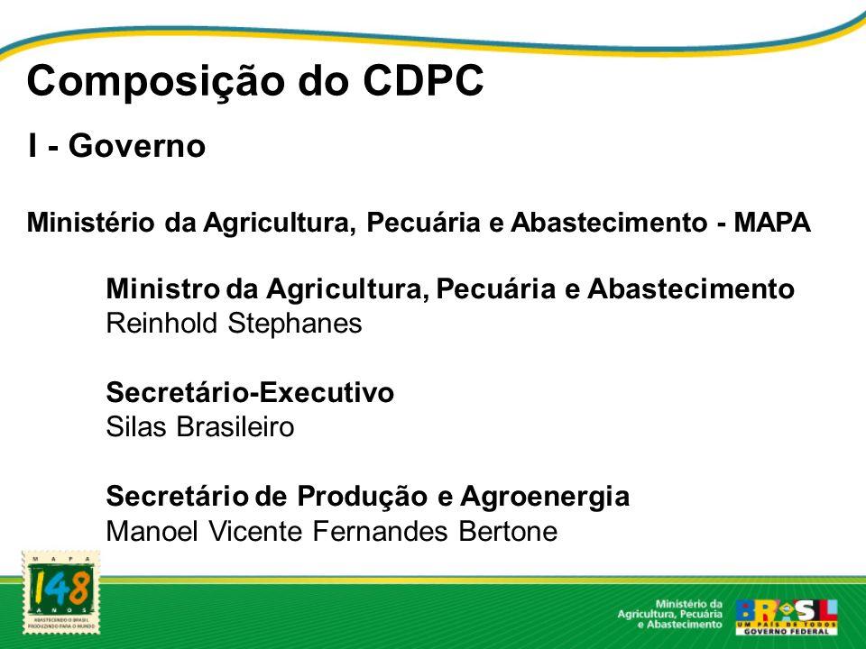 Composição do CDPC I - Governo