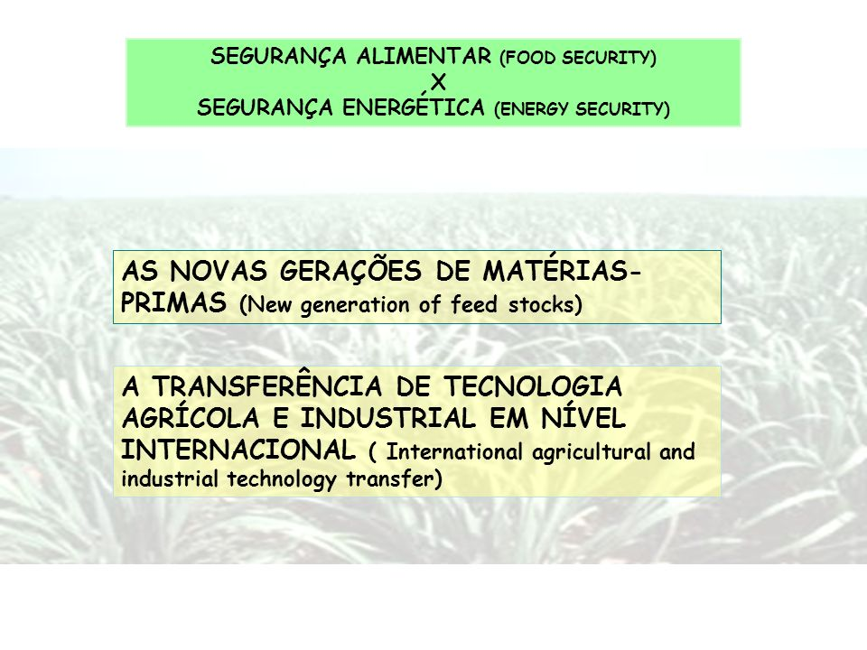 AS NOVAS GERAÇÕES DE MATÉRIAS-PRIMAS (New generation of feed stocks)