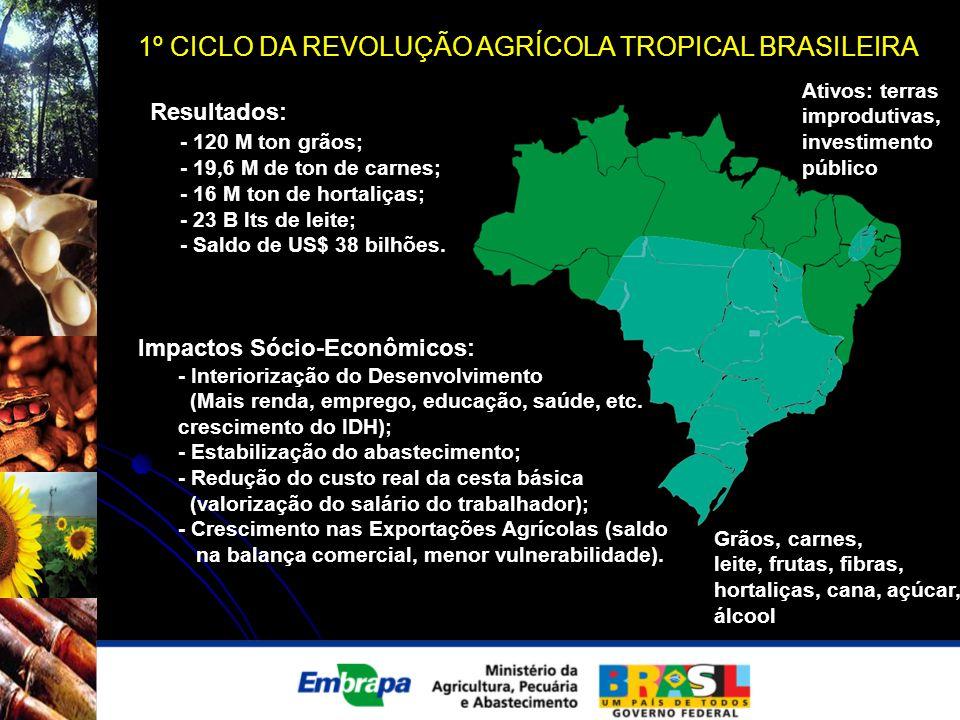 1º CICLO DA REVOLUÇÃO AGRÍCOLA TROPICAL BRASILEIRA