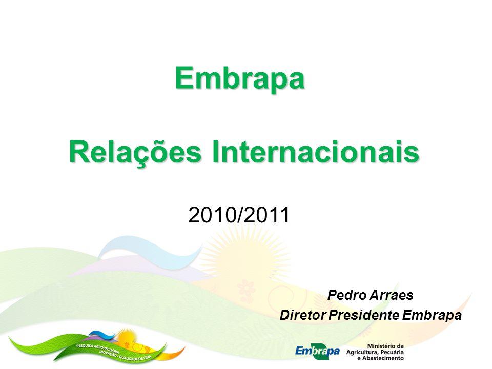 Relações Internacionais Diretor Presidente Embrapa