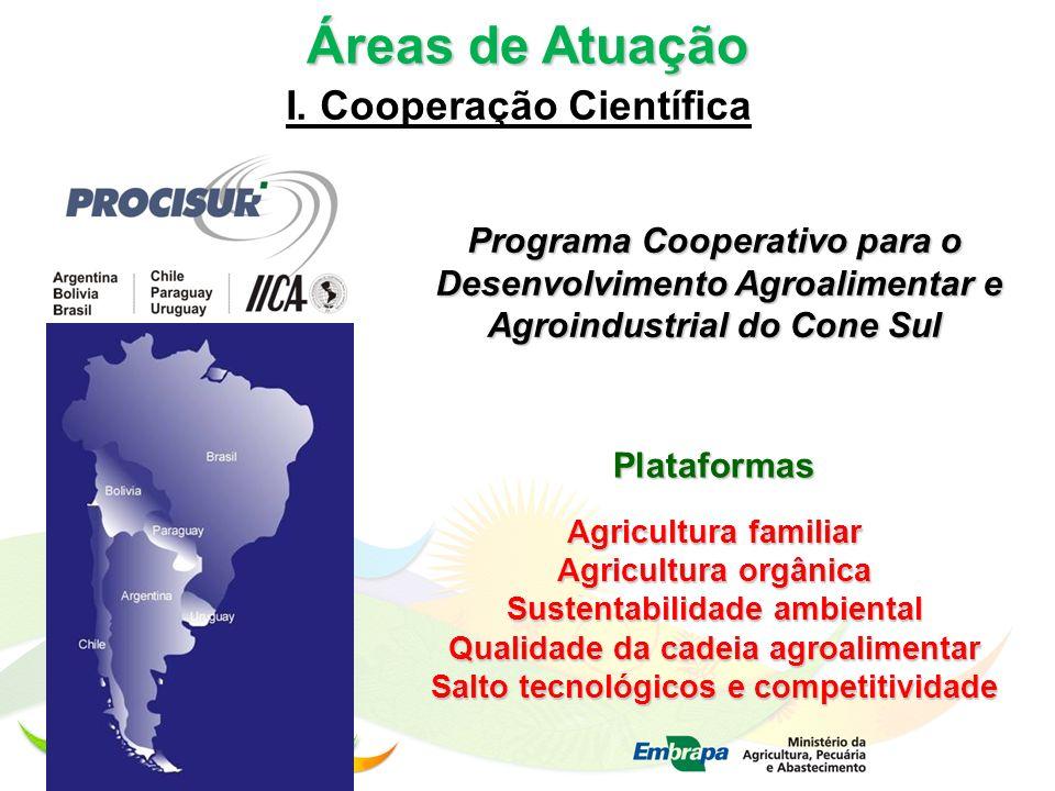 Áreas de Atuação I. Cooperação Científica Programa Cooperativo para o