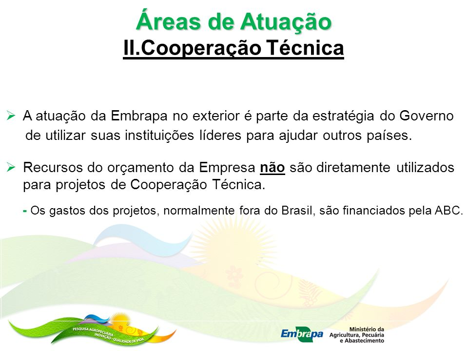 Áreas de Atuação II.Cooperação Técnica
